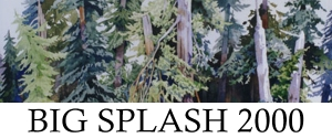Big Splash 2000