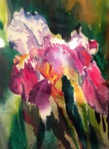 Iris Study III by Linda Wilmes